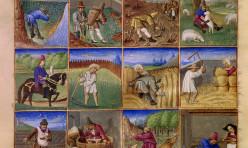 Le Rustican : calendrier des douzes mois de l annee montrant les travaux des champs au 15e siècle. Miniatures conservées au musée Condé à Chantilly